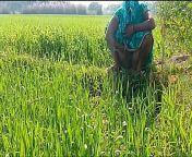 देहाती भौजी को गेहूँ के खेत मे रगड़ के चोदा from dehati khet garden mms hind